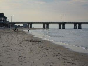 Virginia Beach Va Chics Beach New Movers Our Town America Chesapeake Va